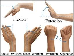 Wrist Movement